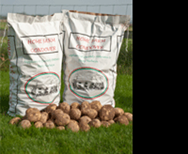 growing potatoes in bags instructions